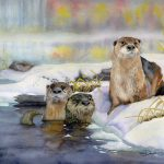 Autumn Dip - River Otters