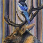 The lookout -Elk and Magpie